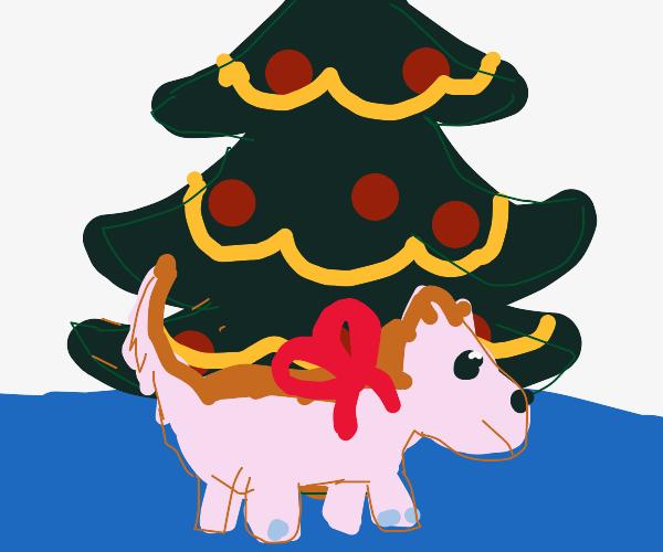 Corgi-potamus for Christmas.