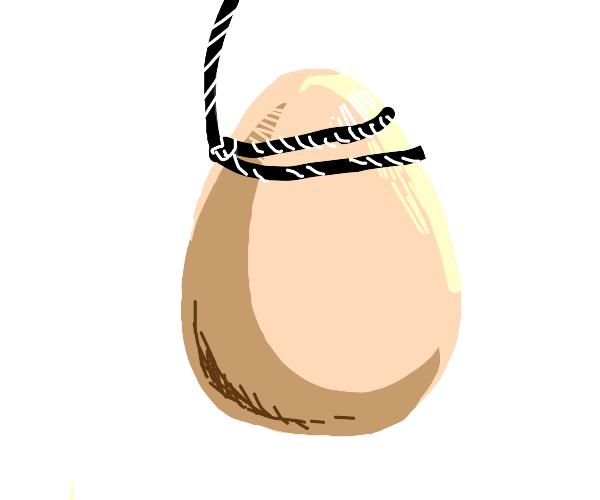 egg on string