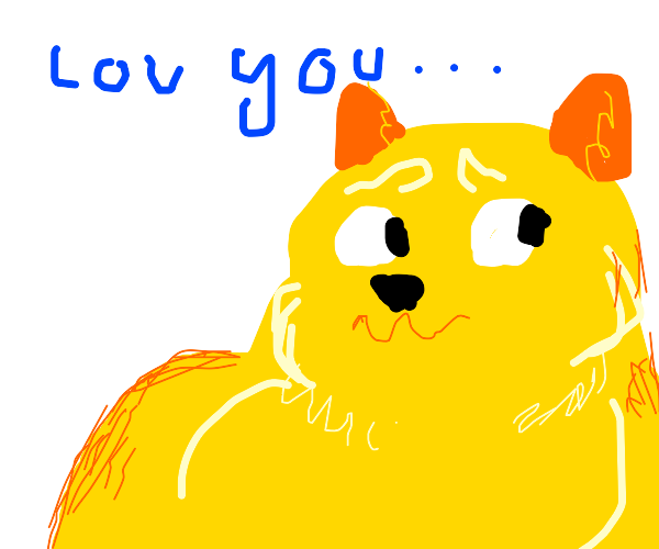 The doge love you