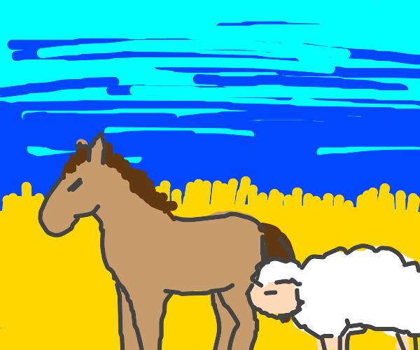 a horse and a sheep in a field