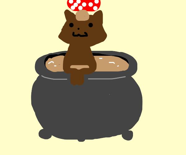 Mushroom stew cat