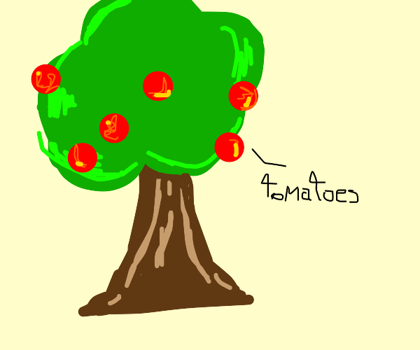 A apple tree With tomatoes instead of apples
