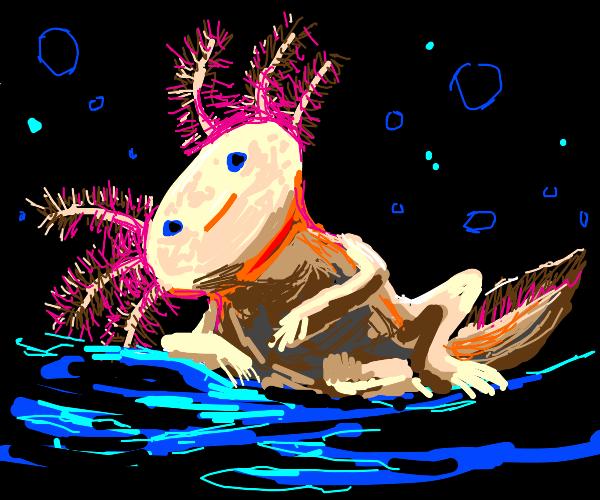 Axolotl be chilling