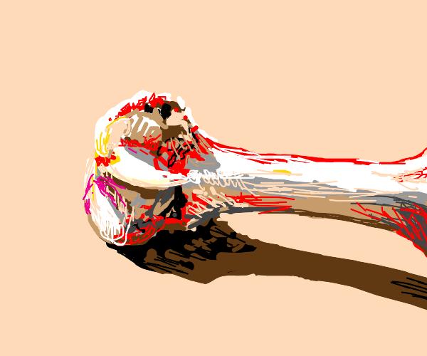 Bloody skeleton bone on the floor