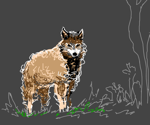Wolf dressed as a sheep