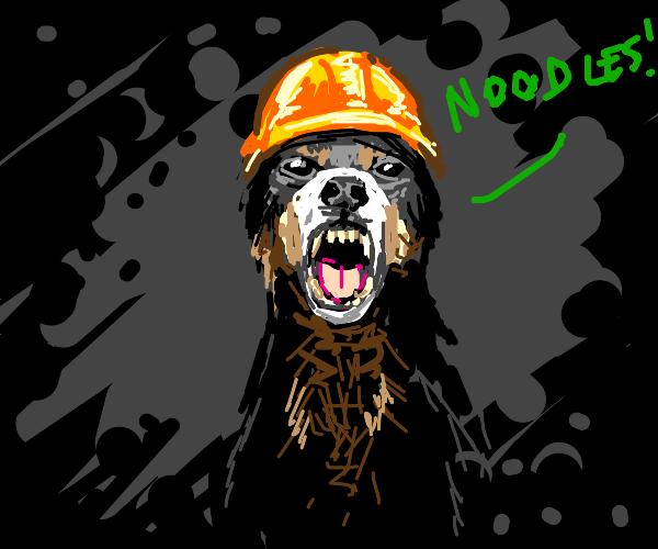 Worker dog demanding noodles
