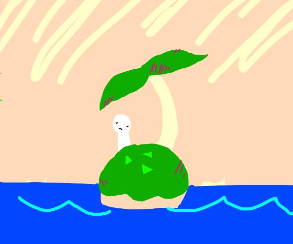 Person finds small island