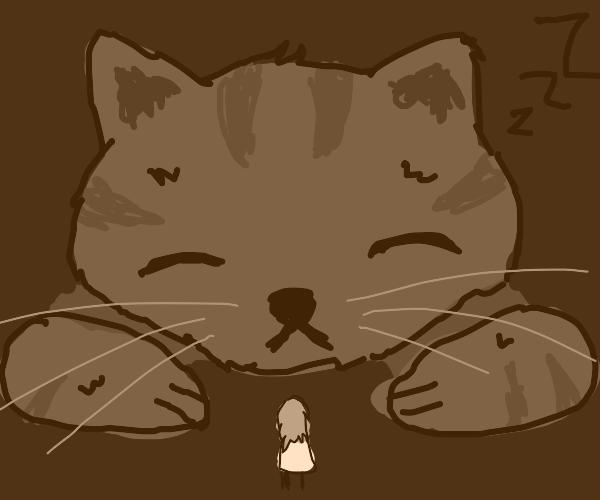 Giant sleeping cat, small girl.