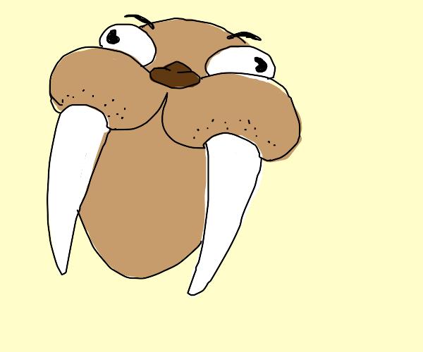 Manic Walrus