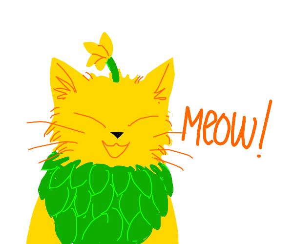 cat flower hybrid meows