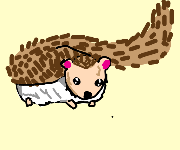 Hedgehog has an extremely long tail