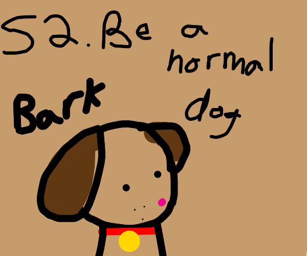 Step 1: Be a dog.