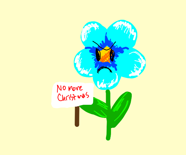 Angry flower bans Christmas