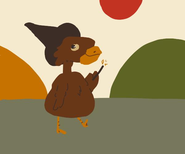 Turkey witch