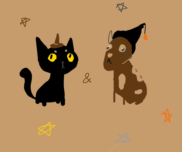a witch cat and a wizard dog! :D