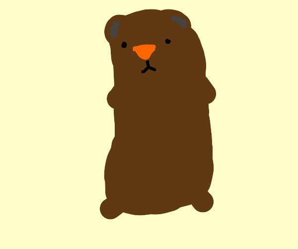 long bear