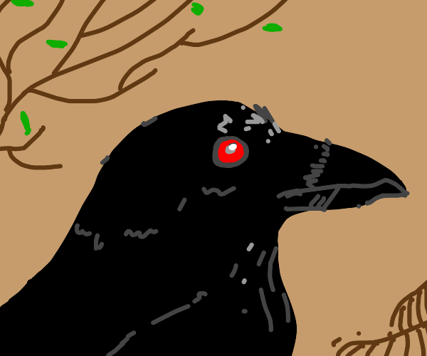 A Raven with red eyes