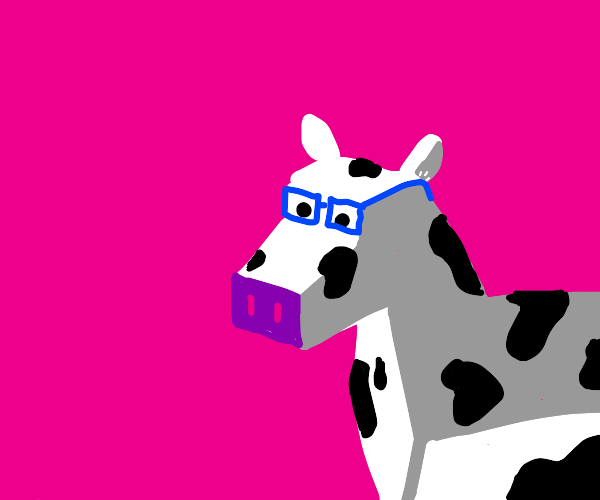 A cow with glasses
