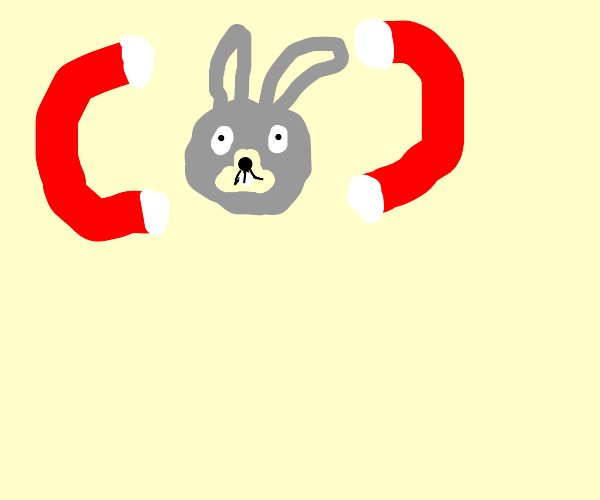 bunny in the middle of two magnets