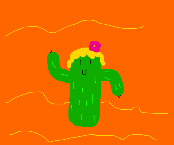 cactus with blonde wig