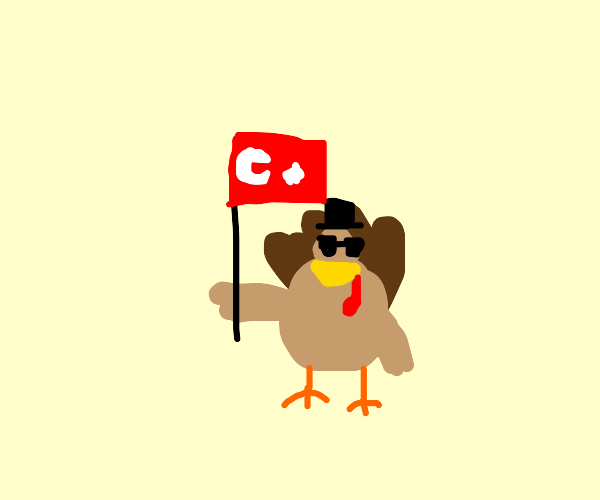 Turkey flag with a hat and glasses