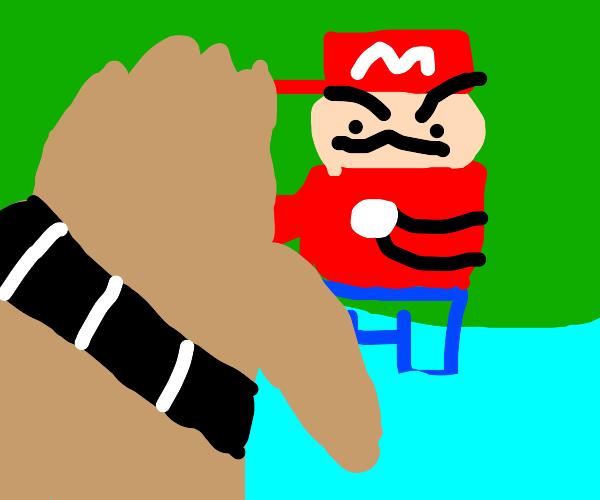 Chewbacca vs Mario in a river