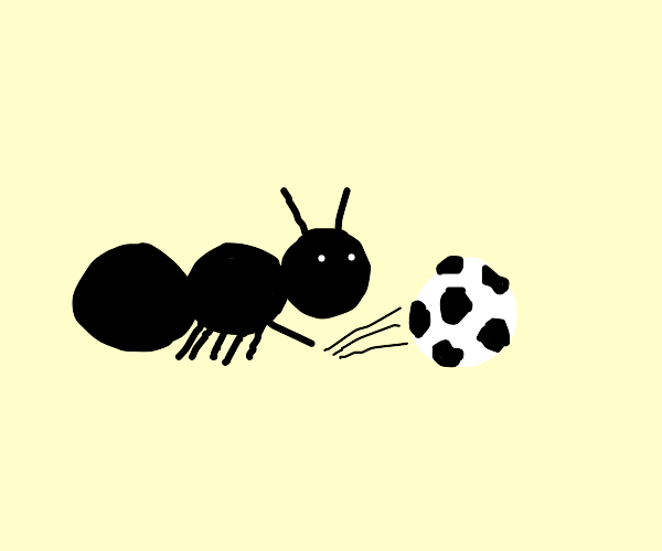 ant playing soccer