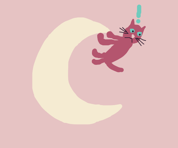 Cat holds onto the moon for dear life
