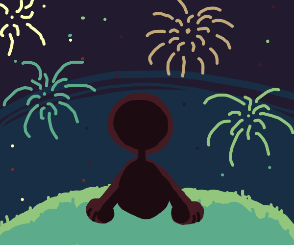 Person watching fireworks