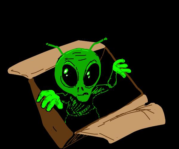 Alien in Box