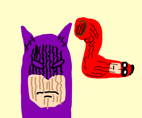 Classic Batman and Robin Sock Puppets!