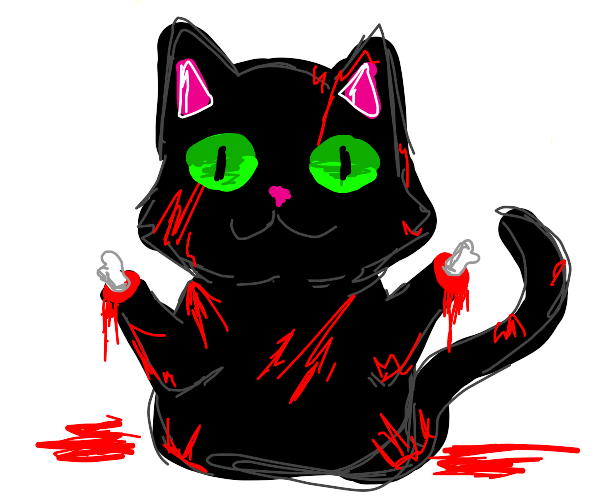 Cat covered in blood with dismembered paws