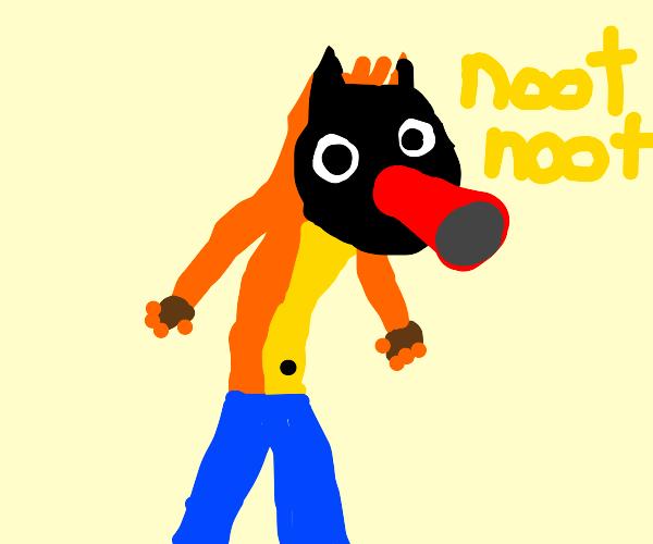 Bandicoot but bandinoot-noot