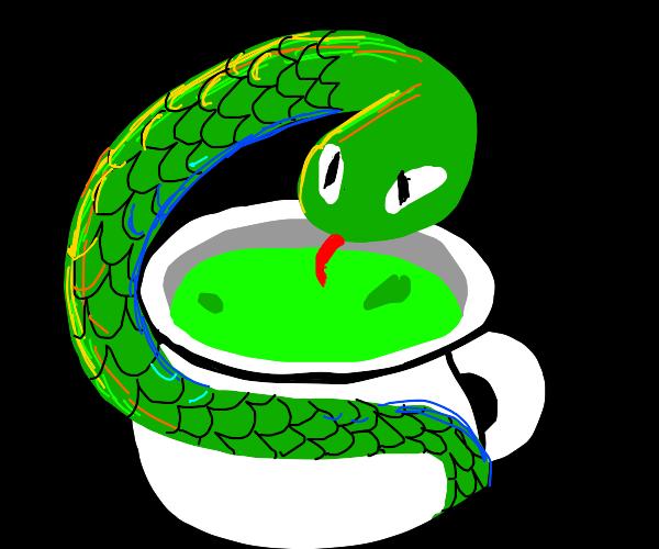 snake tea