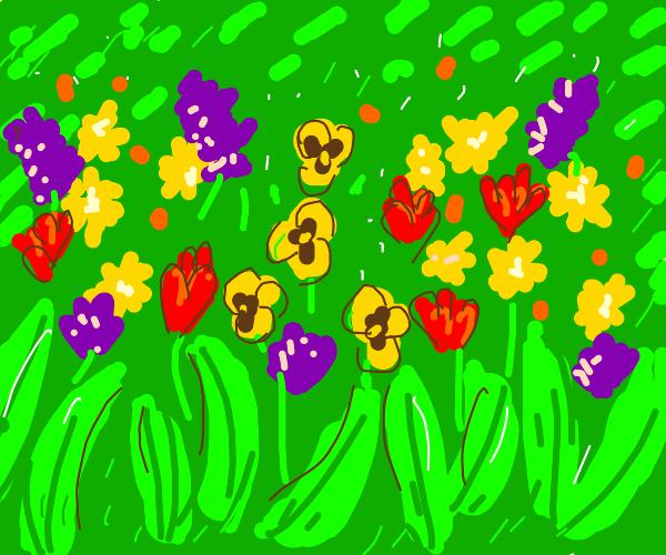 Springtime flowers!