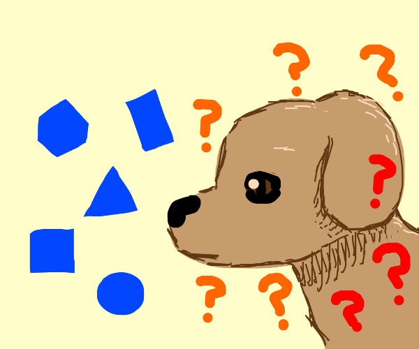 Dog Is confused at shapes