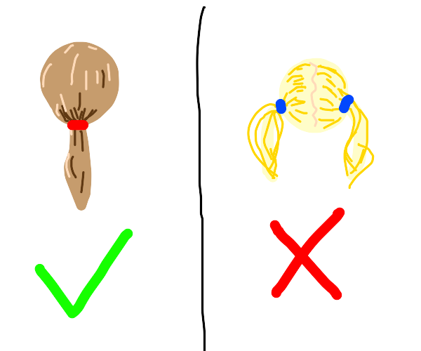 single pony tail is correct