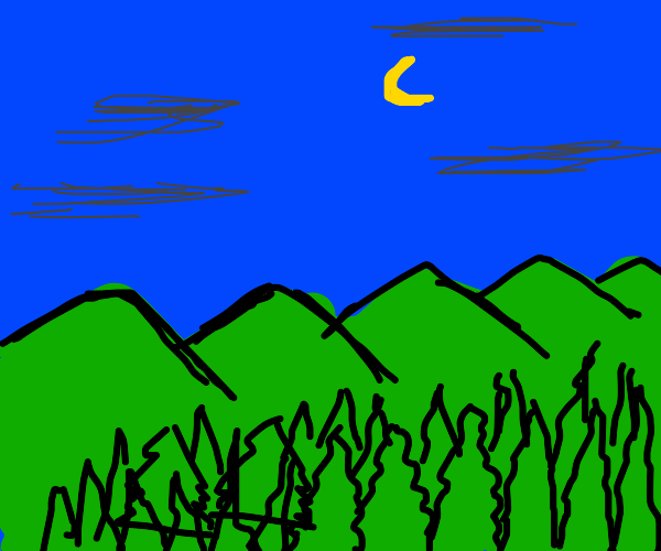 Mountain range and forest at night