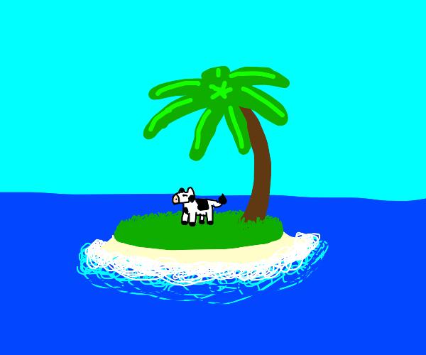 cow on an island