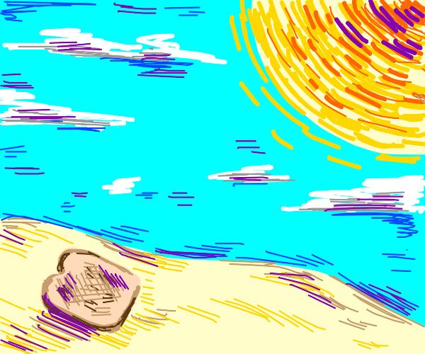 sun-toasted bread