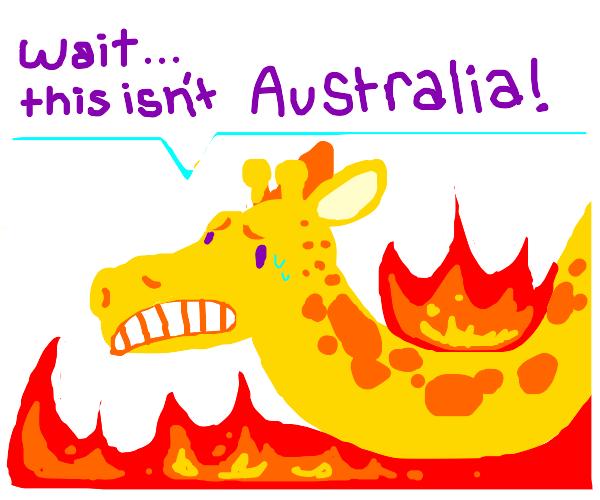 Giraffe is on fire