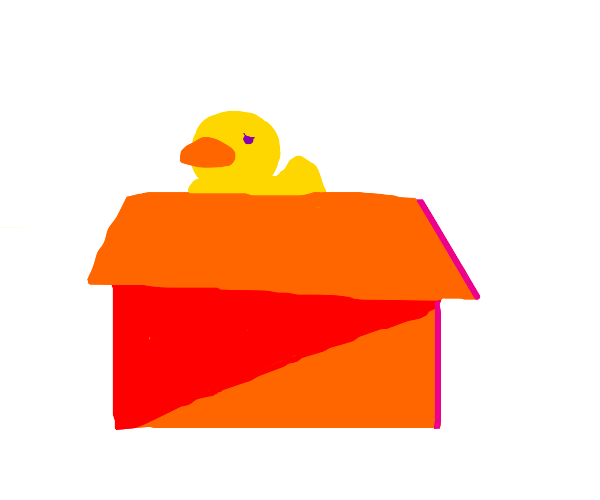 Rubber ducky in the box.