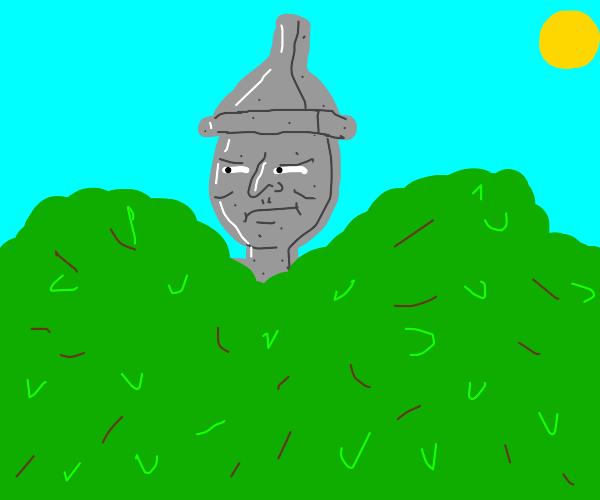 Tin foil man hiding in bushes