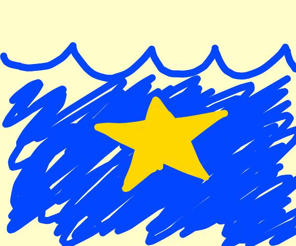 Yellow star undersea