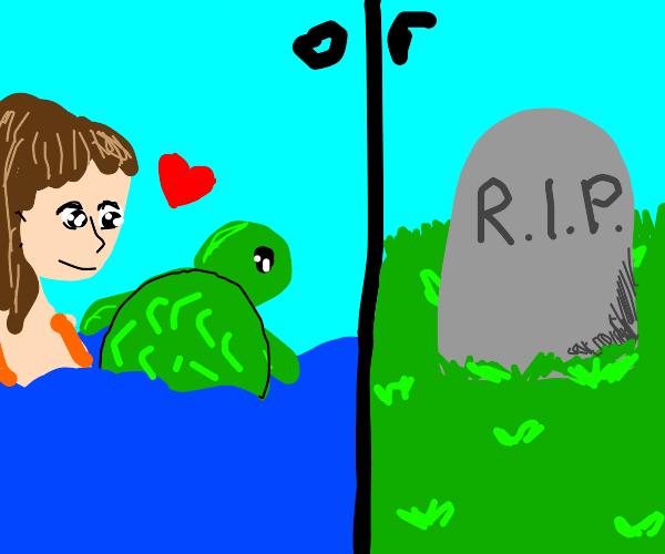 Be nice to turtles or die