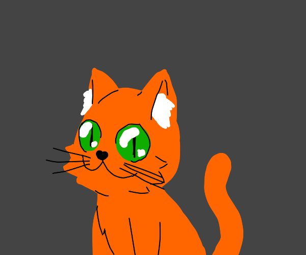 orange cat with big mouth and eyes