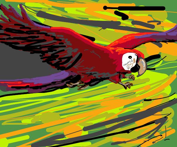 Parrot: quadrapeds are better than bipeds