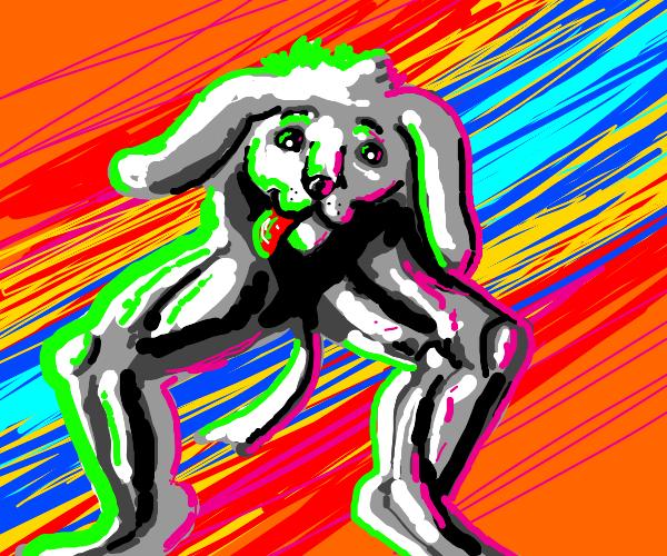 doggo head with human legs