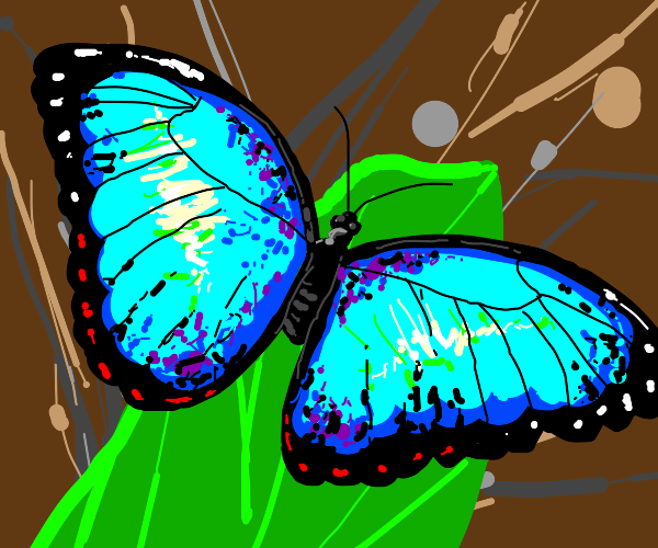 weirdly bright butterfly
