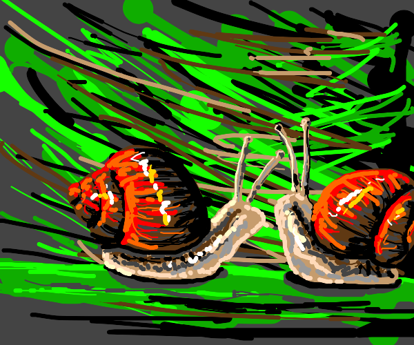 Hmm, snails get top game, right? Draw that!